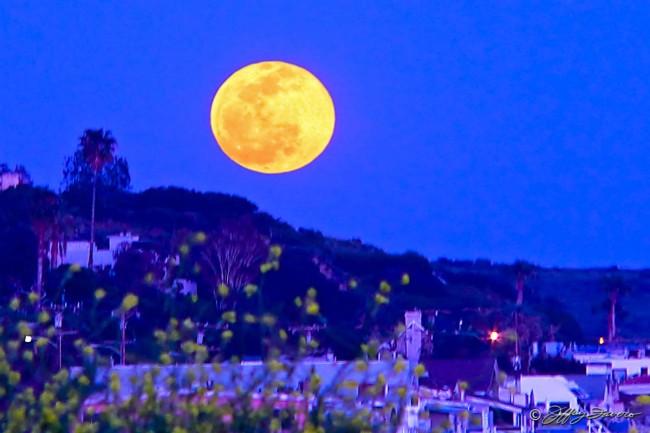 Malibu Full Moon