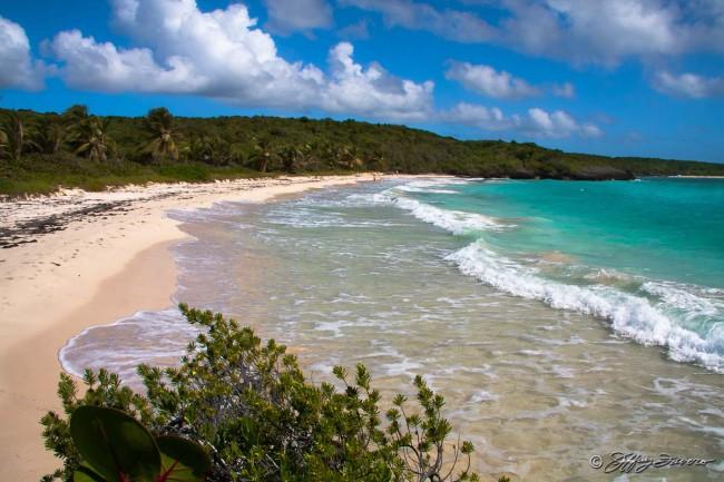 Playa Navio - Vieques, Puerto Rico  SVI