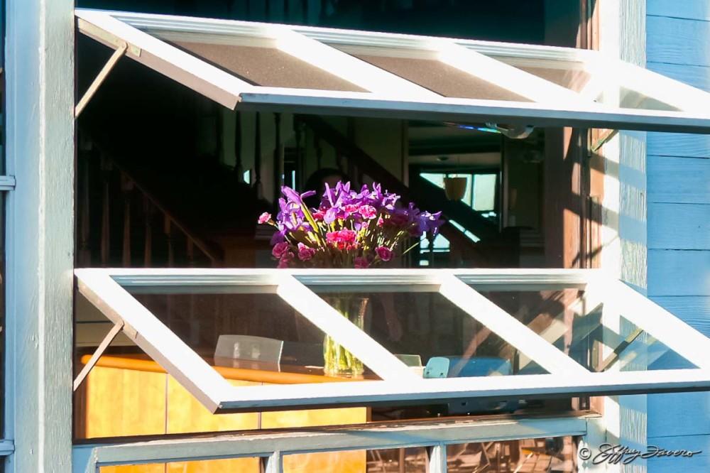 Window Flowers - San Francisco Pier