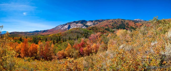 North Fork Fall Colors