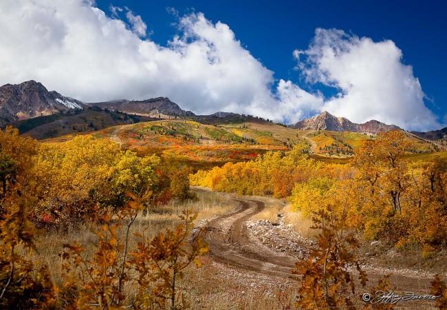 Fall Below Snow Basin