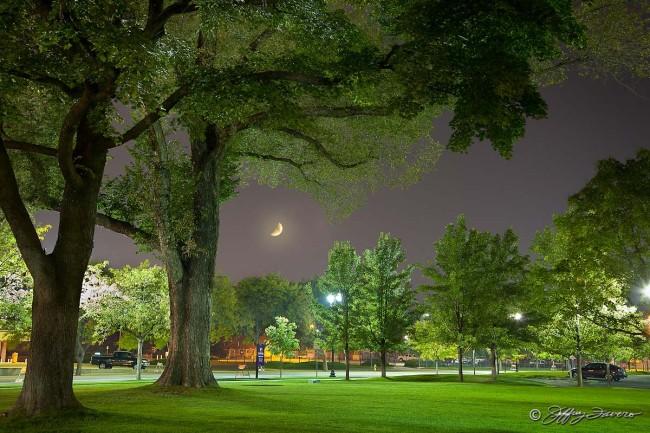 Crescent Moon Across Municipal Park