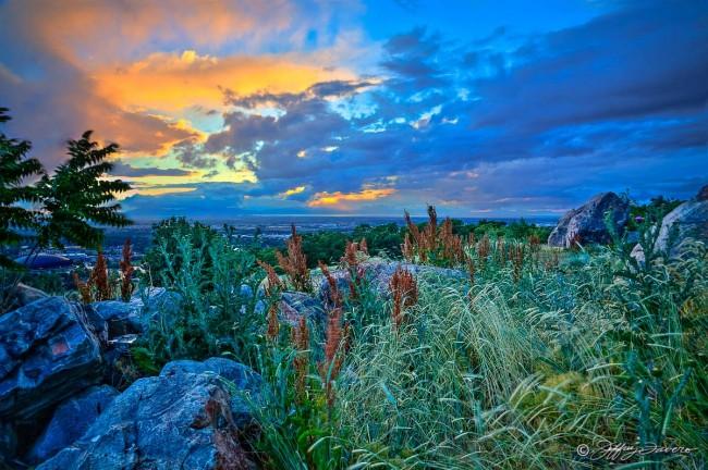 Mid-June Evening Sunset