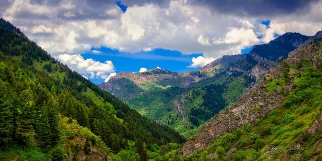Spring Ogden Canyon