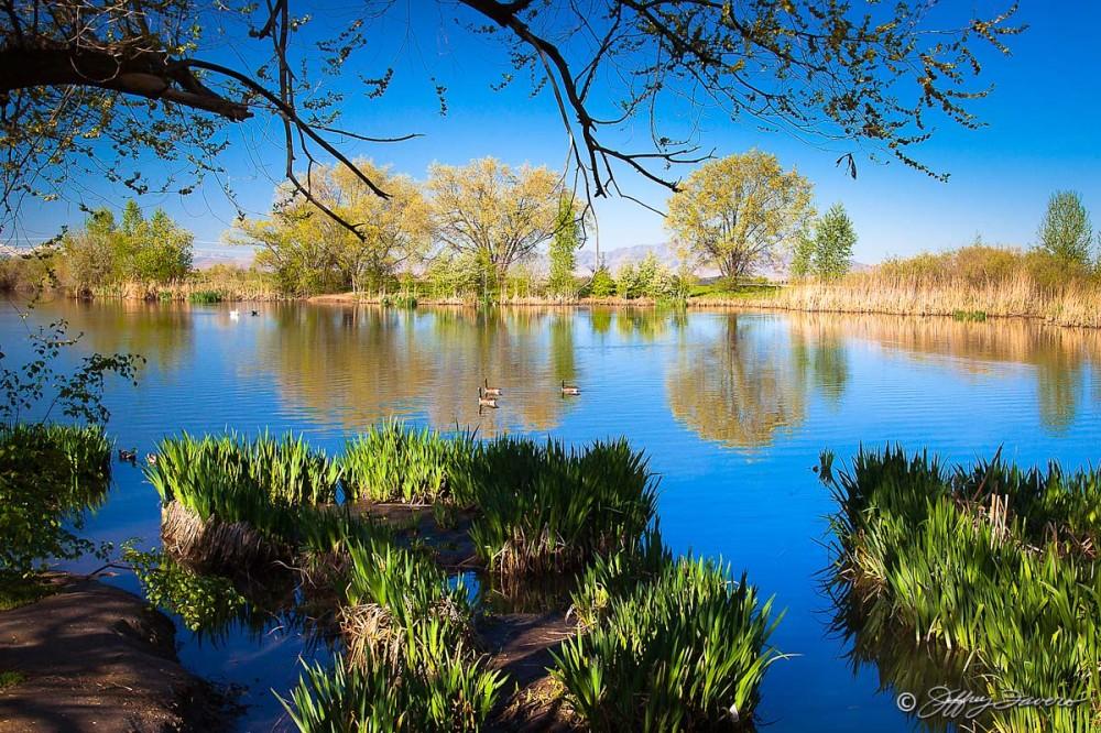 Kaysville Pond