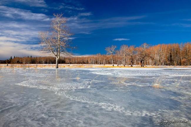 Overflow Ice