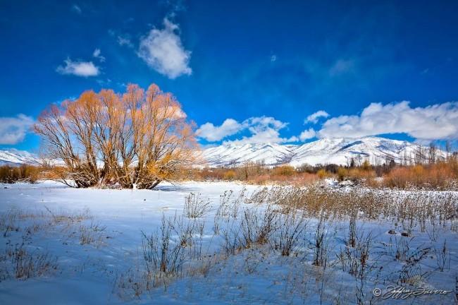 Colorful Ogden Valley Winter