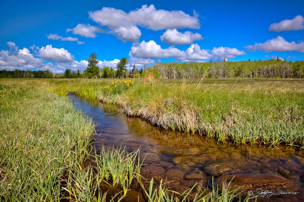 Stream Meadow Sky Jeffrey Favero Fine Art Photography