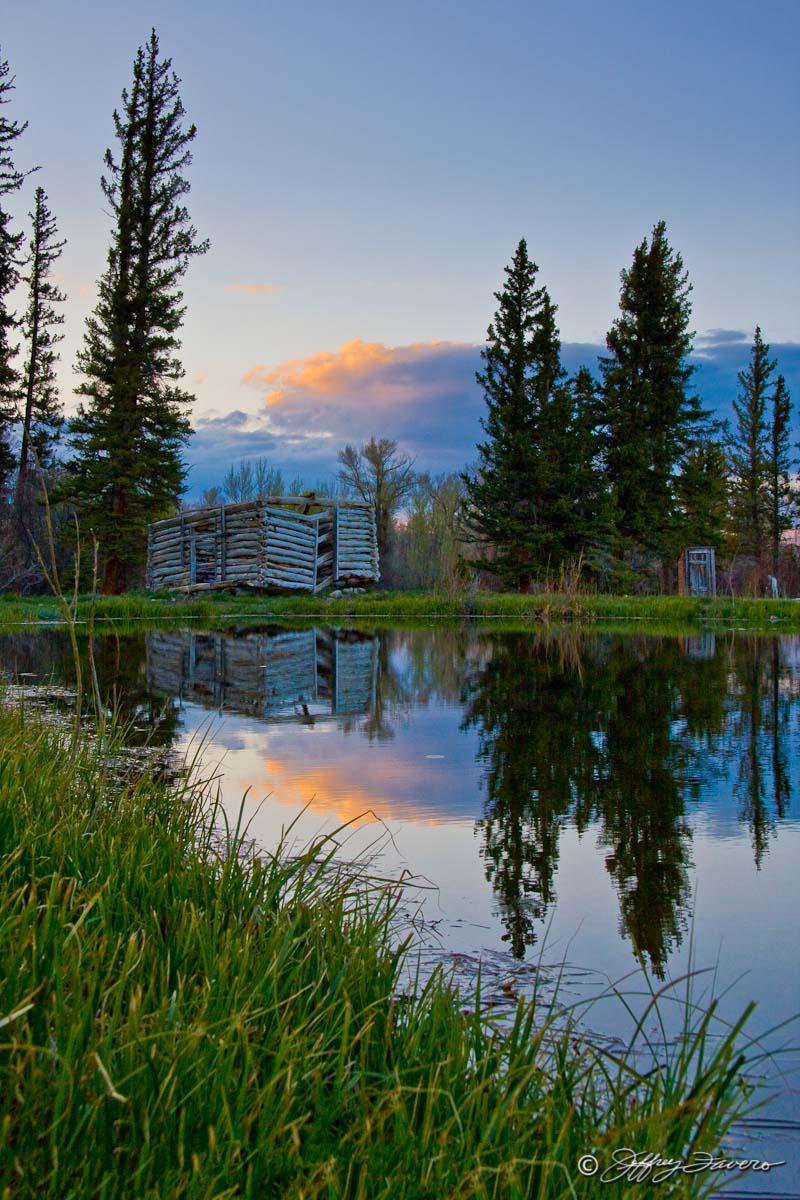 Cabin Pond Reflection