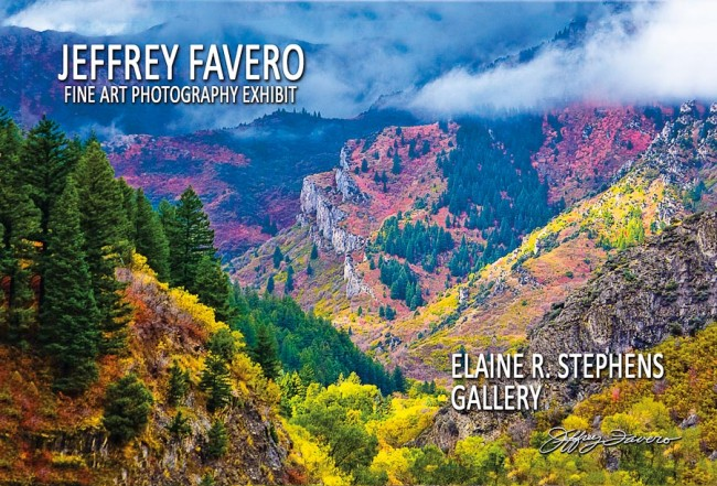 Elaine R. Stephens Gallery - Jeffrey Favero Featured Artist