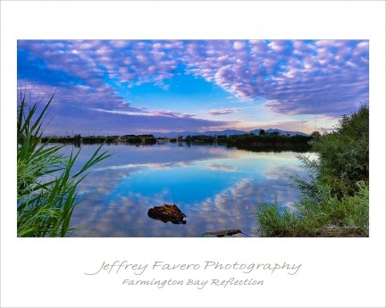 Farmington Bay Reflection