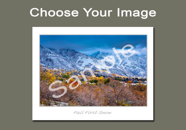 Choose Your Image Notecards